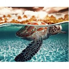 Картина по номерам Черепаха 40*50см, zak47-XZC-97-16